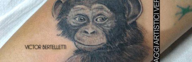 Scimpanzé in stile realistico bianco e nero