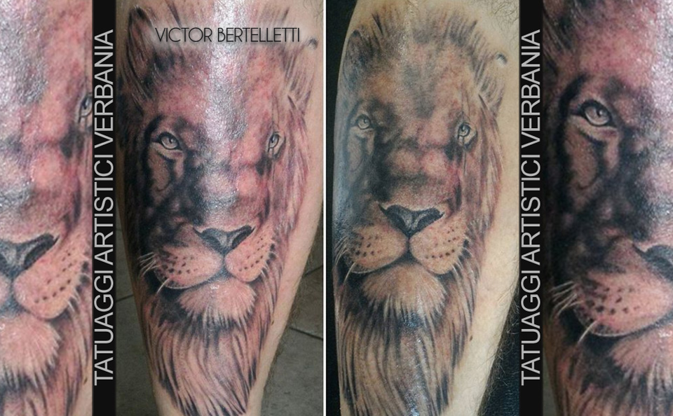 Leone realistico, tatuaggio a colori realizzato da Victor Bertelletti