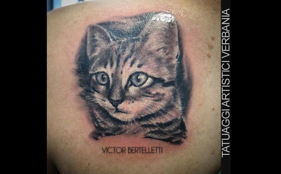 Ritratto del gatto, tatuaggio realistico realizzato da Victor Bertelletti